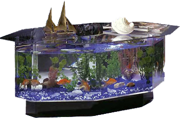 fish, tank, tanks, aquatable, freshwater, aquarium, aquariums, table, saltwater