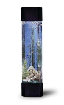 fish, Tank, tanks, aquatower, freshwater, aquarium, aquariums, saltwater