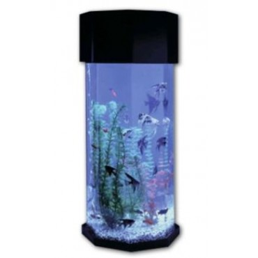 Desktop Fish Tank aquariums