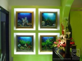 Aquavista, 500, wall, mount, mounted, aquarium, aquariums, fish, tank, tanks