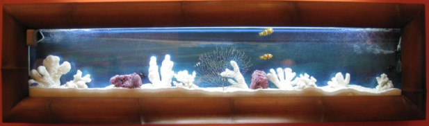 large bayshore wall mount aquarium fishtank