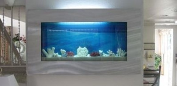 bayshore wall mount rectangle aquarium
