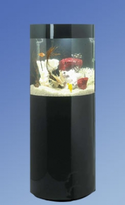 P-180, panorama, designer series, acrylic, aquarium, aquariums, fish, tank, tanks, Midwest tropical, freshwater, saltwater