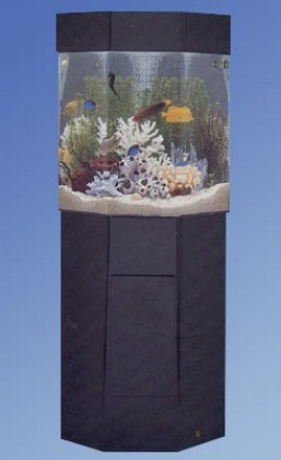 P-5, pentaview, designer series, acrylic, aquarium, aquariums, fish, tank, tanks, Midwest tropical, freshwater, saltwater