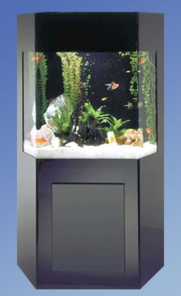 s-b1, shadowbox, designer series, acrylic, aquarium, aquariums, fish, tank, tanks, Midwest tropical, freshwater, saltwater
