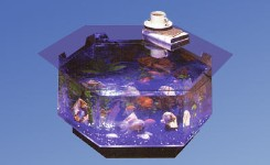 Aquatable, aquatable, Midwest tropical, table, aquarium, aquariums, fish, tank, tanks, acrylic