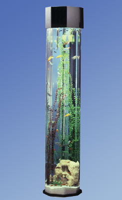 Aquatower, aquatowers, Midwest tropical, aquarium, aquariums, fish, tank, tanks, acrylic