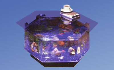 o-100, aquatable, aquatables, aquarium, aquariums, table, tables, Midwest tropical, fish, tank, tanks