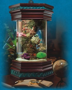 ocean treasures collection designer nano tank desktop aquiarum, executive