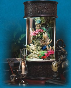 ocean treasures collection designer nano tank desktop aquiarum, outback